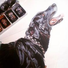 Dogportrait by @anne Hviid Nicolaisen.