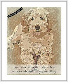 Labradoodle Digital Art Print with Quote Every once in awhile a dog enters into your life and changes everything. Perfect for Breed and Cute Puppies, Dogs And Puppies, Doggies, Australian Labradoodle, Dog Quilts, Doodle Dog, Dog Paintings, Goldendoodles, Labradoodles