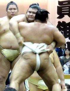 高安、大関取りへ「炎の20番稽古」…秋巡業22日間で計440番 #相撲