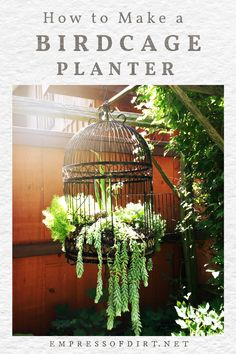 Birdcage planters are a favorite with creative gardeners. These tips share ideas for setting up a new or upcycled birdcage as a planter for succulents or annuals. Terrace Garden, Garden Art, Garden Design, Flower Planters, Garden Planters, Dyi Plant Stand, Container Plants, Container Gardening, Birdcage Planter