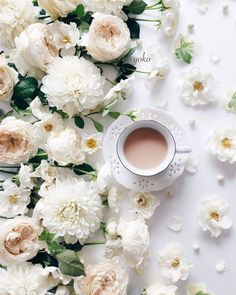 I Love Coffee, My Coffee, Morning Coffee, Coffee Mornings, Flat Lay Photography, Coffee Photography, White Flowers, Beautiful Flowers, Coffee Flatlay