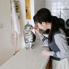 写真 内田彩仍、カメラマン中島千絵美、添島久美子不定期連載でお届けしている「特集・我が家のイヌとネコ」。今回は、暮らしを自分らしくていねいに、そして楽しむアイデアを著書などでご紹介する内田彩仍さんのご