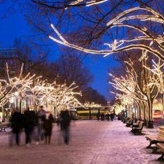 Hay ciudades a las que definitivamente les sienta muy bien la navidad. Berlín es una de ellas donde podrás pasar la navidad con bratwurst (galletas tipicas) y vino caliente… En  la foto: los árboles de Unter den Linden se iluminan cada año por esta época.