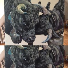 Sabina Kübler, Eringer Cows, Fight, Acryl on Canvas Moose Art, Zurich, Cows, Canvas, Switzerland, Paintings, Animals, Cow Pictures, Capricorn