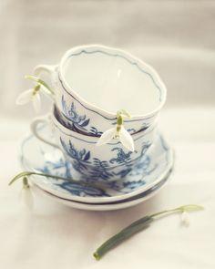 Oh tea cups....