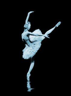 Sylvie Guillem, Swan Lake