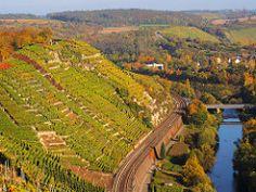 Vineyard Terraces above the Wine Route (Württemberger Weinstraße) por Batikart
