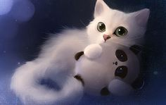 It's my panda!