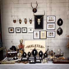Malatea studio, Area Wunderkammer, Future Vintage Festival, 2016