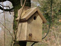 Meisenkasten, Vogelhaus, Nistkastenm, Bruthilfe Bird, Outdoor Decor, Home Decor, Kinds Of Birds, Enemies, First Aid, Timber Wood, Decoration Home, Room Decor