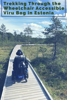 This bog in Estonia is Wheelchair Accessible thanks to a raised boardwalk.