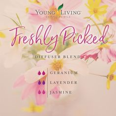 In other words, your mind and body are hardwired to respond in very specific ways to different scents and aromas. Essential Oil Carrier Oils, Yl Essential Oils, Essential Oil Perfume, Essential Oil Diffuser Blends, Therapeutic Grade Essential Oils, Young Living Essential Oils, Yl Oils, Young Living Oils, Aromatherapy Oils