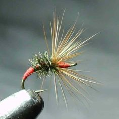 """The """"Akiyamago"""" kebari. A great dry/wet fly very similar in looks & effectiveness to the Western """"Royal Coachman"""" Tied by request http://www.tenkaraflyshop.com/tenkarastore.php?view=productListPage=9"""