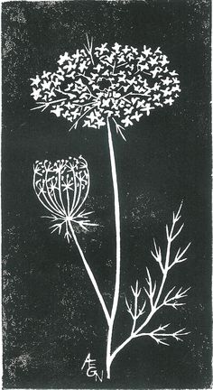 Queen Anne's Lace...done in white ink