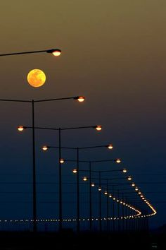 Setting Sun Spotlights Solitary >> 931 Best Street Lights Images In 2019 Cool Pictures Night