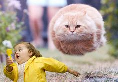 chubby running girl LMAO!!!!!!!!!!!!!!!!!!!!!!!!!!!!!!!!!!!!!!!!!!!!