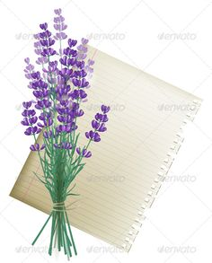 Buy Lavender Bunch by mart_m on GraphicRiver. Retro-styled background with lavender bunch and a piece of paper. Eps 10 and Ai CS 3 included. Lavender Bush, Lavender Bouquet, Lavander, Flower Bouquet Tattoo, Flower Bouquet Wedding, Tattoo Flowers, Plant Sketches, Wildflower Tattoo, Plant Tattoo