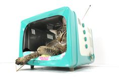 """Me: """"Hey, honey, look! A television converted into a cat bed!""""    My husband: """"They should make litter boxes instead... everything on TV is crap nowadays.""""    Upcycled Vintage General Electric TV Pet Bed by AtomicAttic, $229.00"""