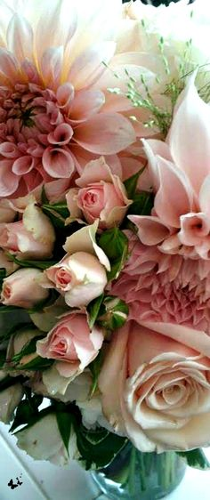 Thank you for following me. Happy Weekend <3 FOLLOWING APRIL #tickledpinkgold