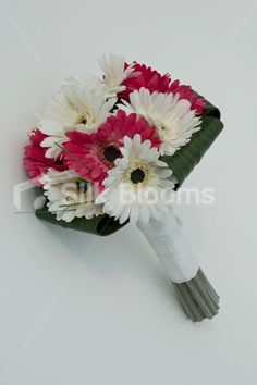 Gorgeous Pink and Ivory Gerbera Bouquet with Orchid Leaves