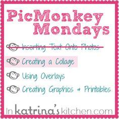 PicMonkey Tutorial- Creating a Customized Collage | inkatrinaskitchen.com