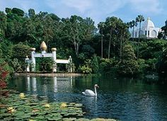 Lake Shrine in Pacific Palisades, Ca.