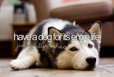 I want one so bad :(