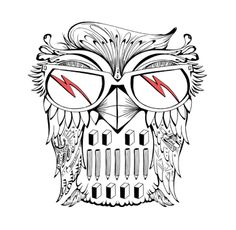 Owl Illustration by FO
