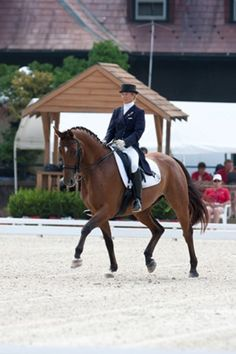 Susan Jaccoma's Exercises to Improve Canter Quality | Dressage Today