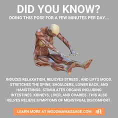 Fitness Diet, Yoga Fitness, Health Fitness, Yoga Moves, Stretching Exercises, Health And Fitness Articles, Health And Wellness, Malasana Pose, Pilates