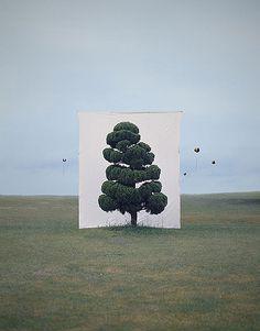 Myoung Ho Lee es un artista Sur Koreano que a traves de sus fotografias logra separar el objeto de su contexto. Al colocar estas mantas gigantes detras de los arboles, Lee logra abstraerlos al pres…