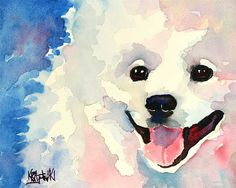 American Eskimo Dog Art Print of Original Watercolor Painting 8x10 on Etsy, $12.50