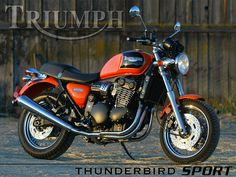 I want to get my licence to ride a motorcycle. Triumph Thunderbird Sport, Motorcycle Wallpaper, Owen Wilson, Triumph Bonneville, Triumph Motorcycles, Motorcycle Parts, New Movies, Bobber, Vehicles