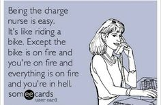 Being the charge nurse is easy.