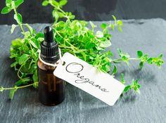 Cómo hacer aceite de orégano casero - propiedades y receta. El orégano es una de las hierbas culinarias que más utilizamos para aromatizar y aportar sabor a muchos de los platos que preparamos. Pero, ¿sabías que además es una planta con muchísimos beneficios p...