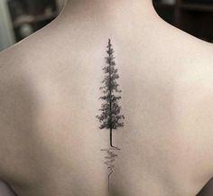 Forest forever