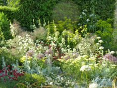 Cleve West, Gold Medal and 'Best in Show' Garden, RHS Chelsea 2011