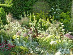Cleve West, Gold Medal and 'Best in Show' Garden, RHS Chelsea 2011 Colorful Garden, Green Garden, Garden Inspiration, Garden Ideas, Landscape Design, Garden Design, Mediterranean Garden, Topiary, Amazing Gardens