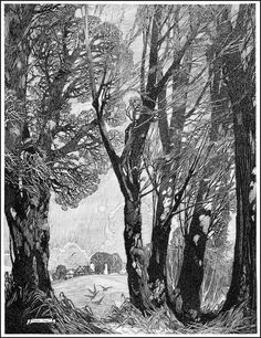Franklin Booth, from Drawing With Pen and Ink by Arthur L. Guptil ~ 1930
