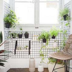 [Make It] Pas la peine d'avoir un balcon pour regarder pousser les plantes ! En installant un mur végétal autour de la fenêtre , c'est la maison tout entière qui passe au vert. Retrouvez le tuto en détail de ce mur végétal imaginé et créé par les blogueurs de @mamieboude , c'est par ici : http://lmfr.io/tuto-realiser-un-mur-vegetal #leroymerlin #decoration #homedecor #homedesign #interiordecoration #interiorinspiration #interiordesign #diy #lampe #makeit #madecoamoi #instadecor…