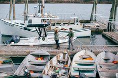 Yarmouth Maine & Freeport Maine : Margaret & Bryon's green house and coastal photo shoot. Yarmouth Maine, Freeport Maine, Top Wedding Photographers, Photography Services, Family Photographer, Knot, Coastal, Photoshoot, Green