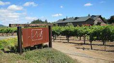 Mauritson Family Winery   Dry Creek Valley   Dry Creek Rd. Healdsburg, CA