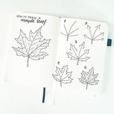 """How To Draw A Maple Leaf"" Because Autumn is almost here and you (and your beautifully decorated journals) should be ready 😚🍁 by bonjournal_ Bullet Journal Leaves, Autumn Bullet Journal, Bullet Journal 2019, Bullet Journal Ideas Pages, Bullet Journal Inspiration, Bullet Journals, Autumn Doodles, Leaves Doodle, Flower Drawing Tutorials"