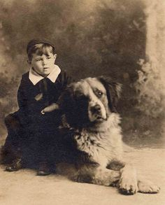 boy with st bernard