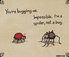Bugging Me - Brainless Tales