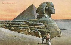 """grandegyptianmuseum:  """"Pyramid and Sphinx (colour photo), early 20th century postcard.  """""""