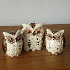 Vintage owl Salt, pepper & napkin holder set.  but I don't have the napkin holder.