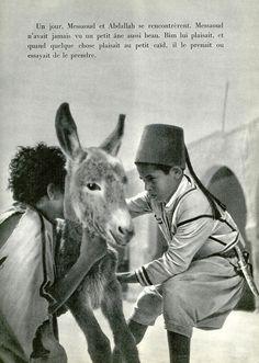 BIM, le petit âne. Jaques Prévert - Albert Lamorisse. Courtesie: Patricia M., pilllpat (agence eureka), (France).