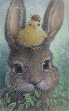 """Spring Critter Stack  """"While munching on some new spring vegetation Oscar Bunny noticed that he had a young chicken on his head wearing a ladybug hat. It might be a delusion, spring fever or just his imagination."""""""
