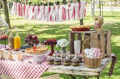 The girl from the candy house: Miranda's second birthday: picnic party Picnic Theme, Picnic Birthday, Adult Birthday Party, First Birthday Parties, Bbq Party, Farm Party, Picnic Decorations, Strawberry Farm, Candy House